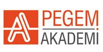 pagem akademi